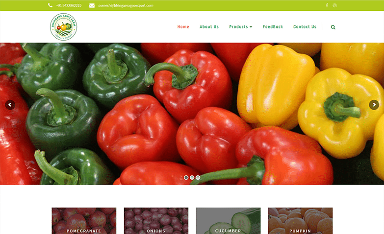 Vegetable Exporter Website